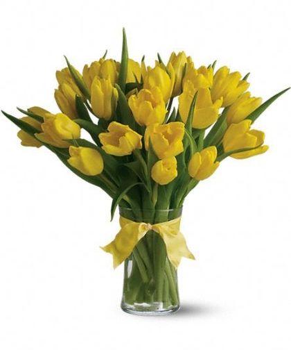 Sunny Yellow Tulips Yellow Tulips Get Well Soon Flowers Tulips Flowers