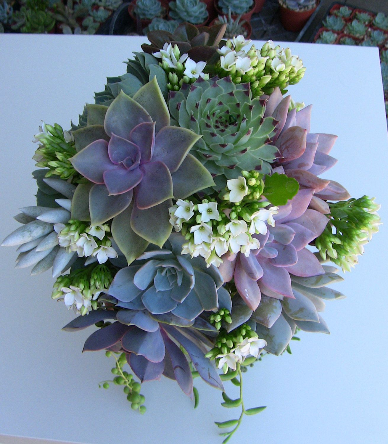 Wedding bouquets not flowers  Succulent Wedding Bouquet I like these colors u shapes but not the