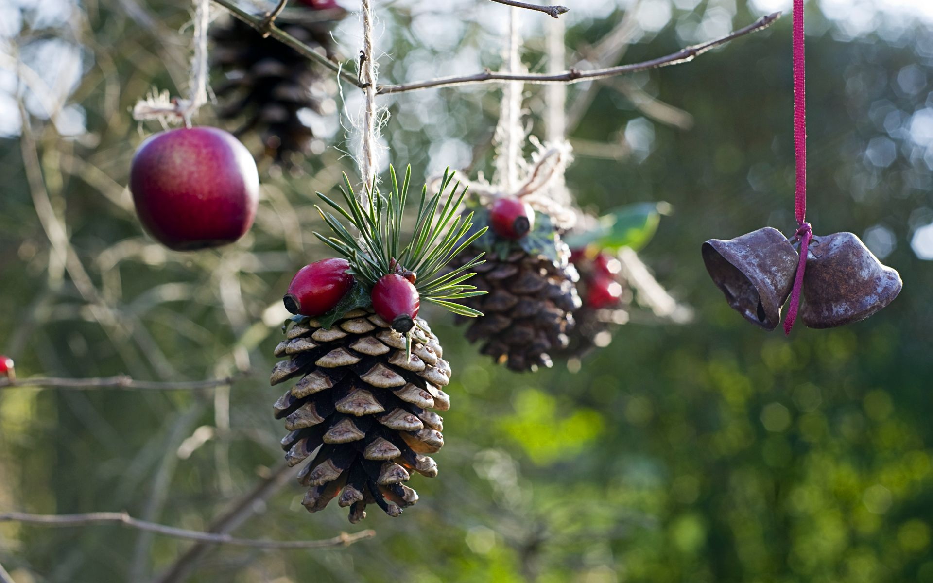 Homemade outdoor holiday decorations made from natural materials
