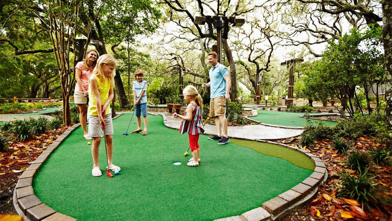 Heron's Cove Adventure Golf at Omni Resort (12 adult, 8