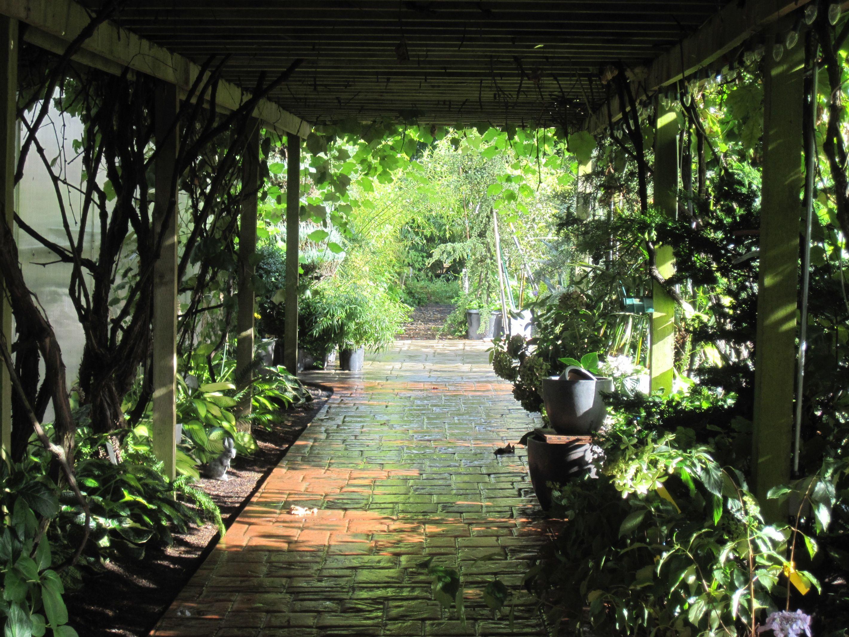 The display garden at Bauman's Farm & Gardens in Gervais