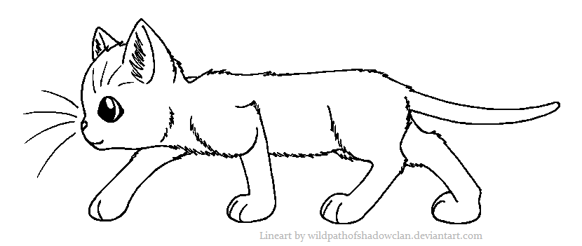 Shorthaired Warrior Lineart By Wildpathofshadowclan Png Warrior Cats Cat With Blue Eyes Warrior