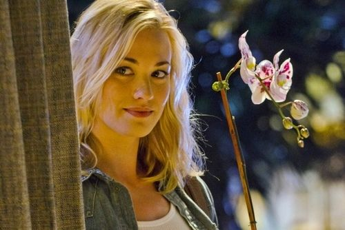 Not Found Yvonne Strahovski Dexter Dexter Wallpaper