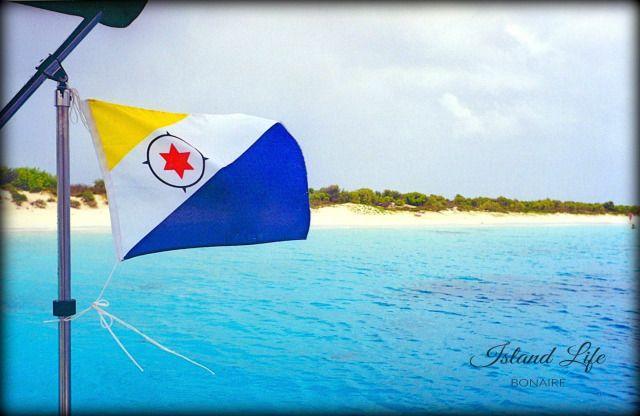 Pin On Scuba Diving Bonaire