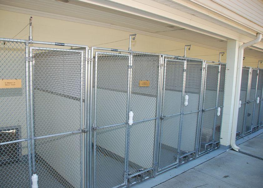 Mason Company Chainlink Gates kennel gates kennel doors & Mason Company Chainlink Gates kennel gates kennel doors | Dog ...
