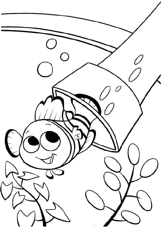 Printable Nemo The Fish Coloring Pages