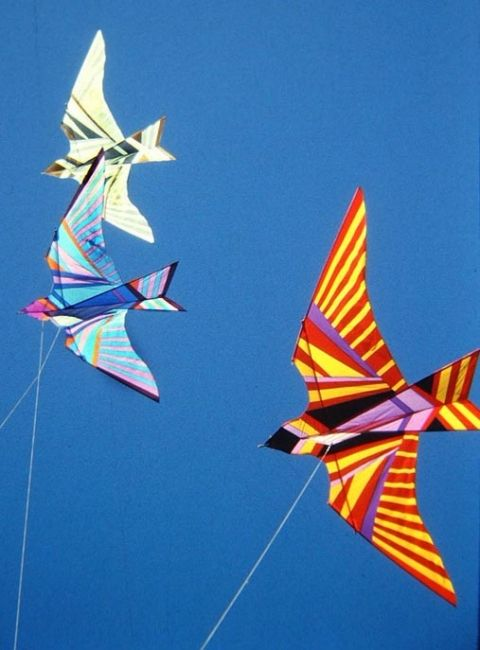 Airworks Studio Kite Works Kite Designs Bird Kite Kite