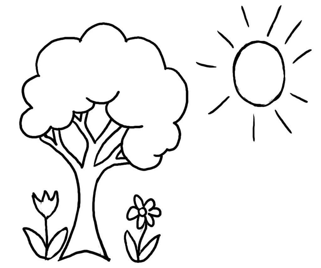 Preschool Coloring Pages And Worksheets Tree Coloring Page