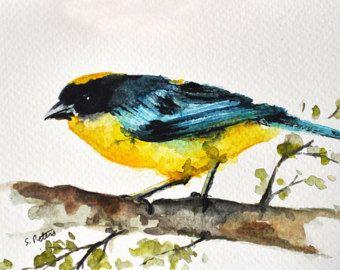 Uccello Dell 39 Acquerello Originale Dipinto Uccello Colorato