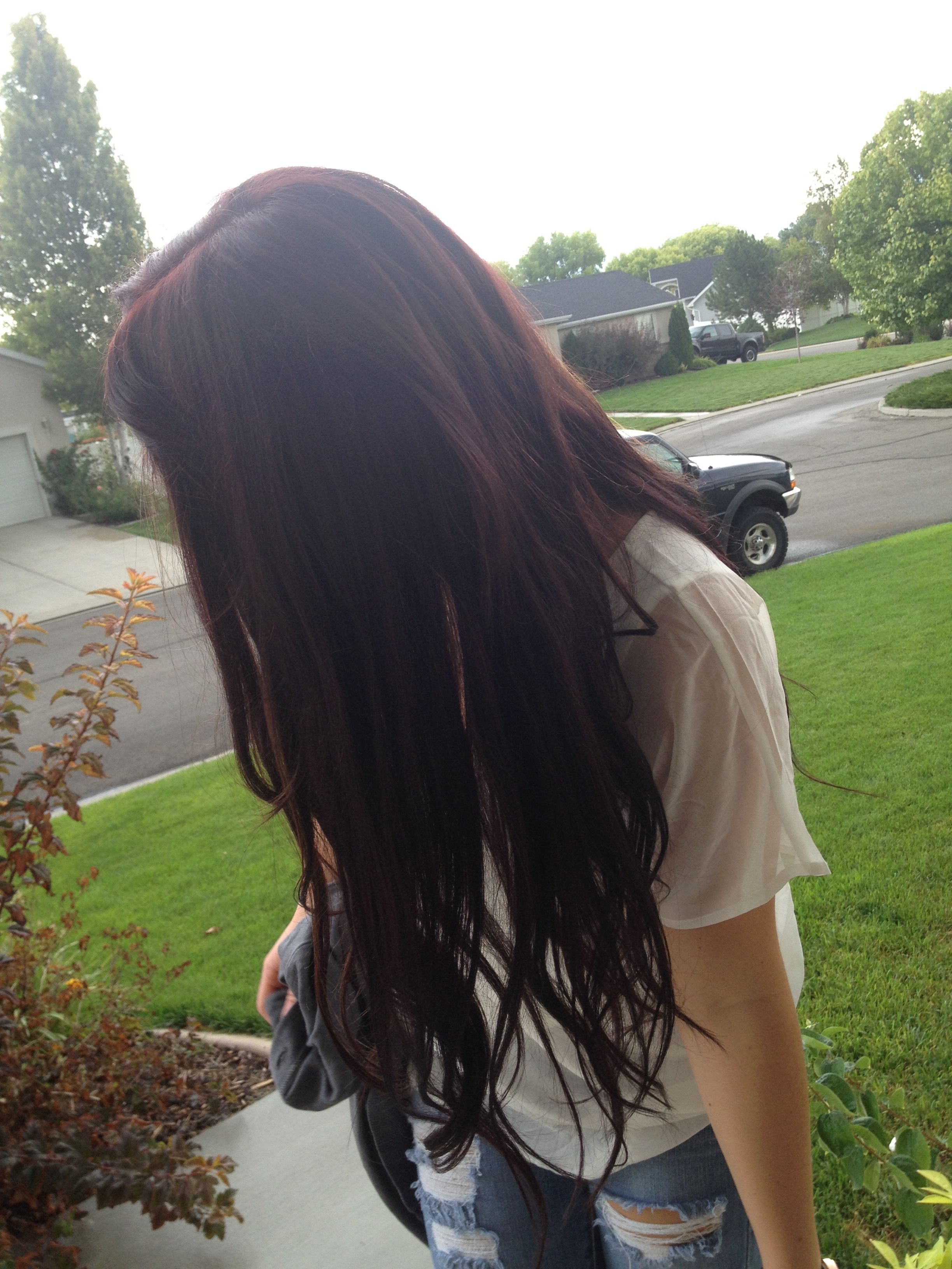 Dark Brown Red Hair With Hidden Blonde Highlights Tumblr Sola