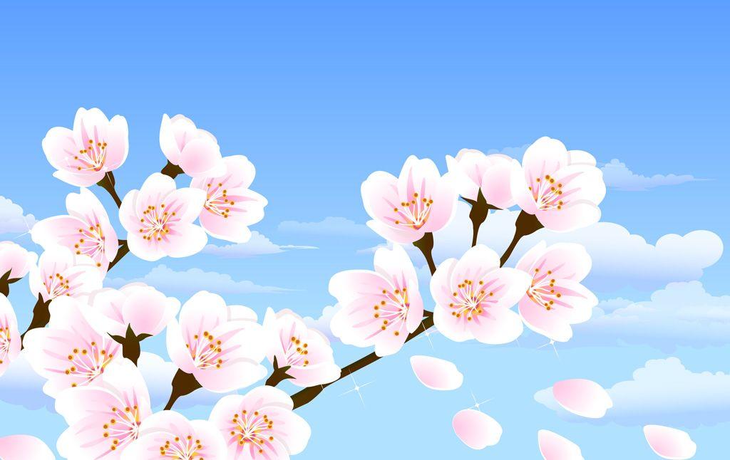 フリーイラスト素材 イラスト 植物 花 桜 サクラ ピンク色の花 4