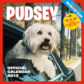 The nation's favourite dancing dog, Pudsey was crowned the winner of Britain's Got Talent. The dogs won this one!