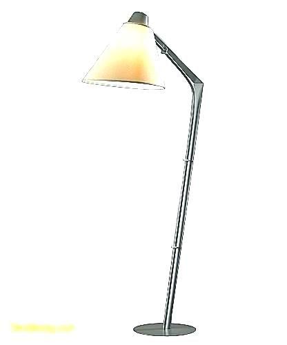 Floor Lamp Reading