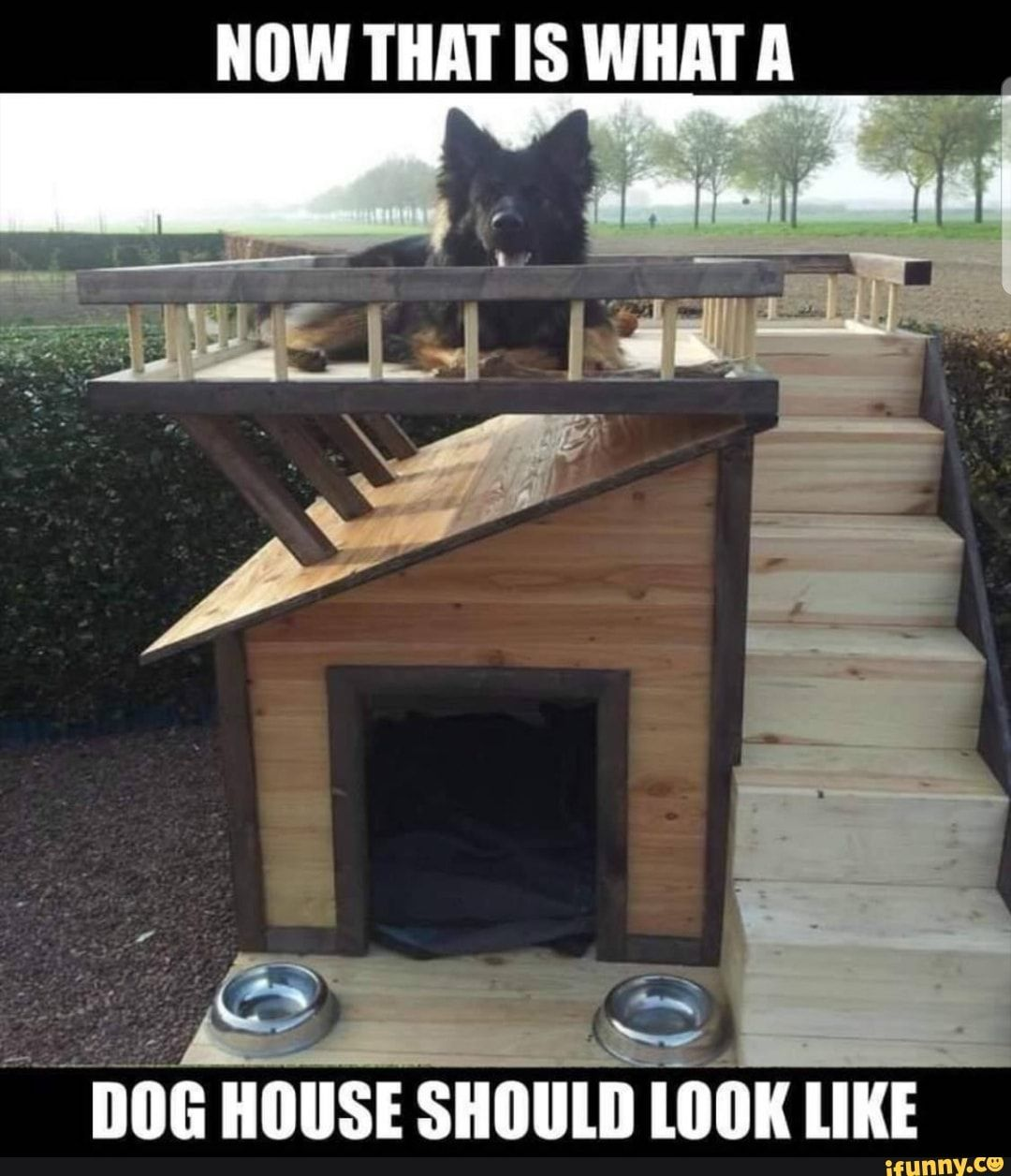 Now That Is What A Dog House Should Look Like Ifunny Dogs