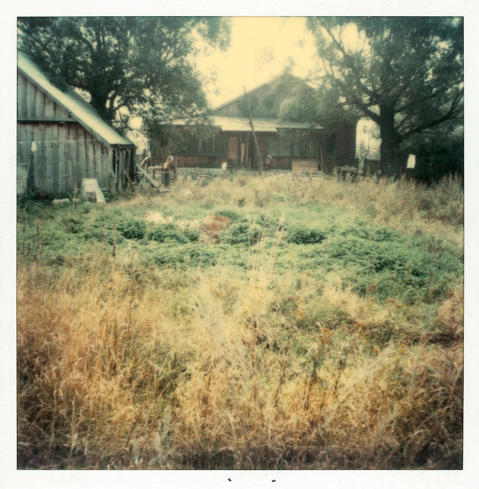 Polaroid by Andrei Tarkovsky Lot 21 - Polaroid 5