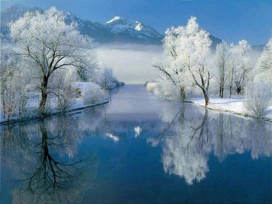 качественный зима природа фото гифки молоко время