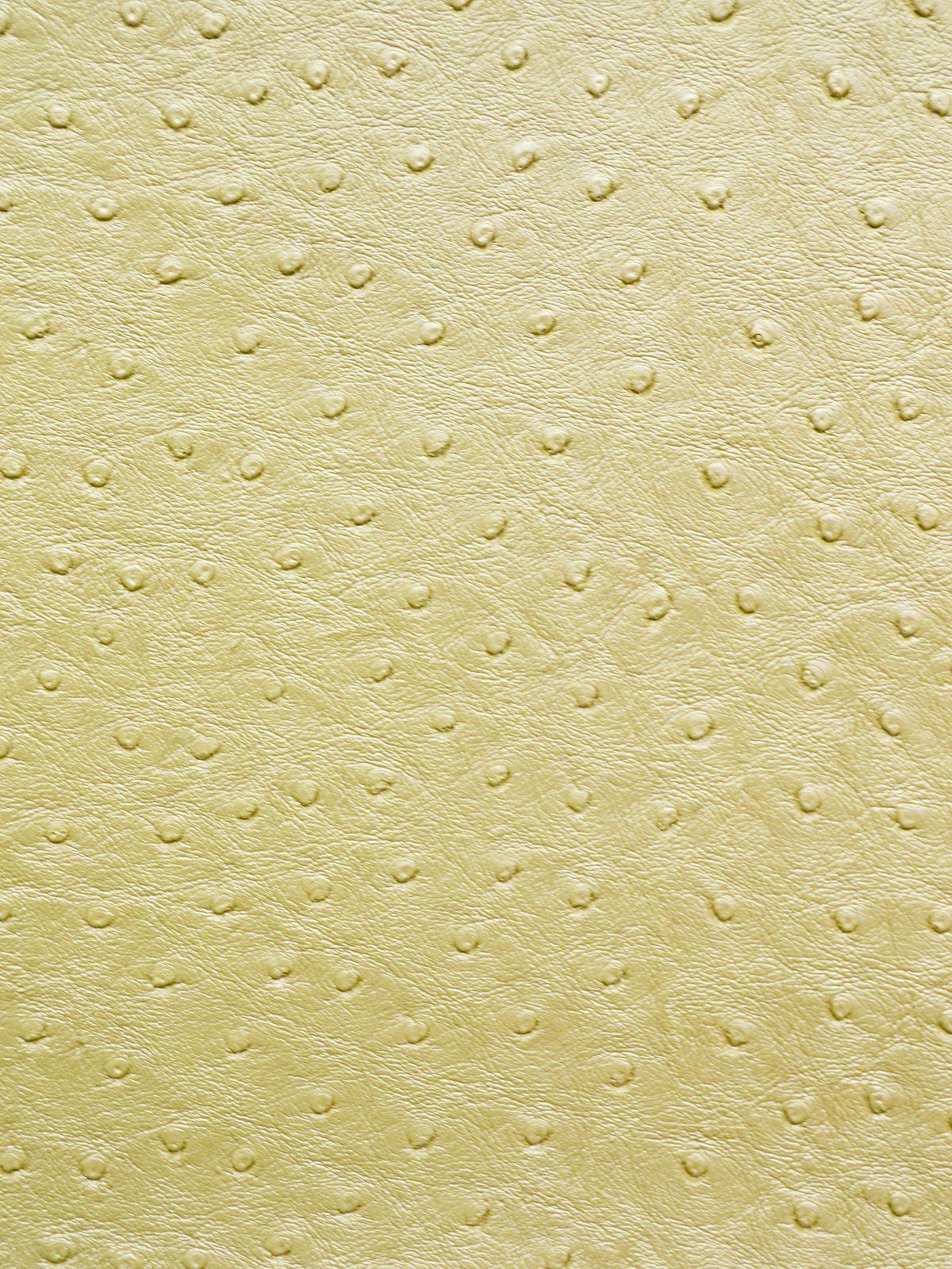 EMU GOLDLEAF - $24.95/yd  http://forsythfabrics.com/collections/vinyl-faux-leather/products/emu-goldleaf