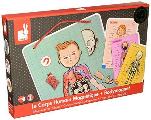 convient aux hommes/femmes 100% authentifié sélectionner pour authentique Janod - J05491 - Body Magnet L'Anatomie - 11 langues: Amazon ...