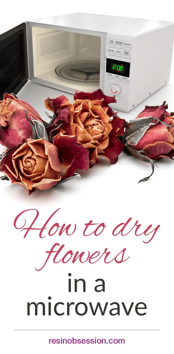 Comment Conserver Des Fleurs Séchées how to dry flowers in a microwave   fleurs séchées, fleurs