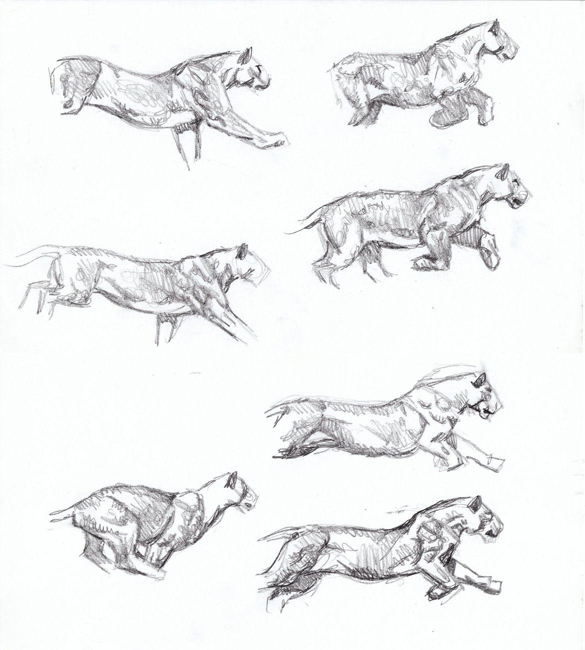 Sabertooth Diaries 3: big cat action sketches | Animal anatomy, Draw ...