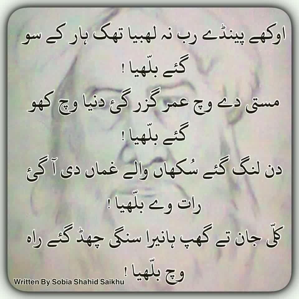 Pin by Nauman on Punjabi | Poetry words, Punjabi poems ...