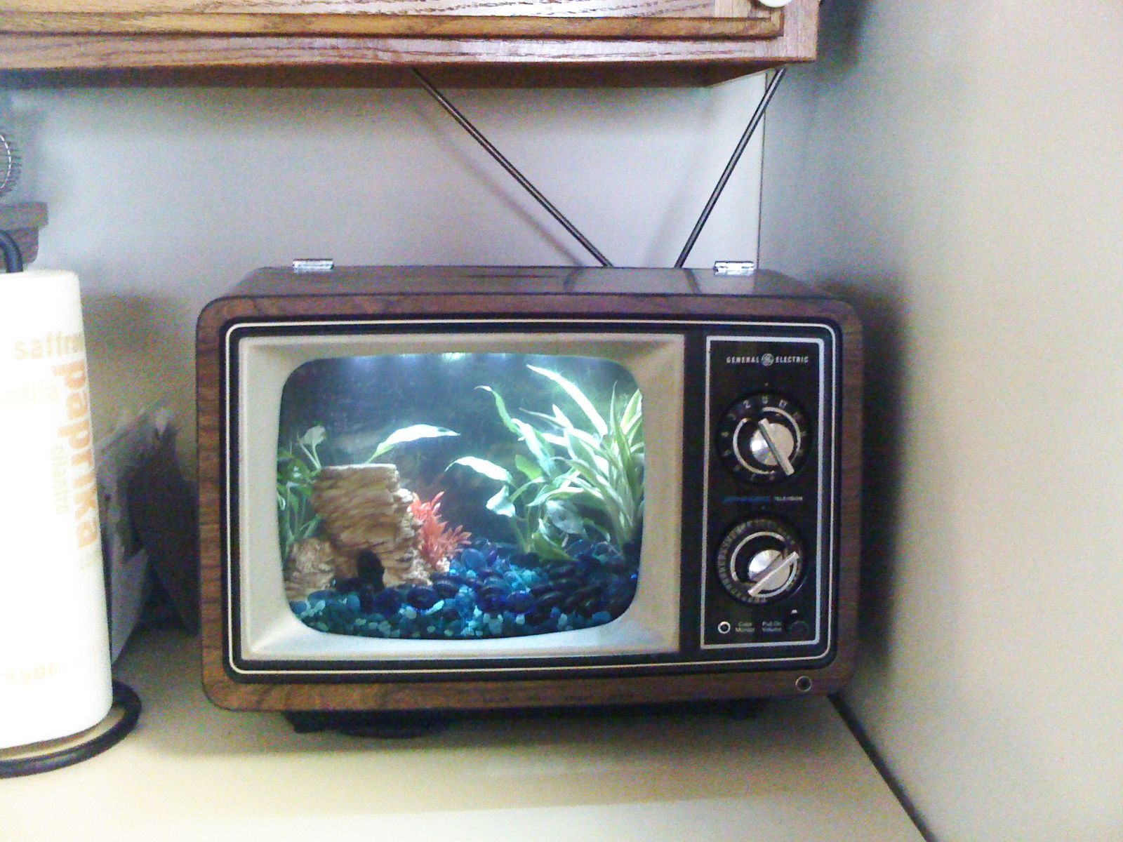 Fish tank in kitchen - Cute Little Table Top Version Of The Fish Tank Tv Aquarium Tank