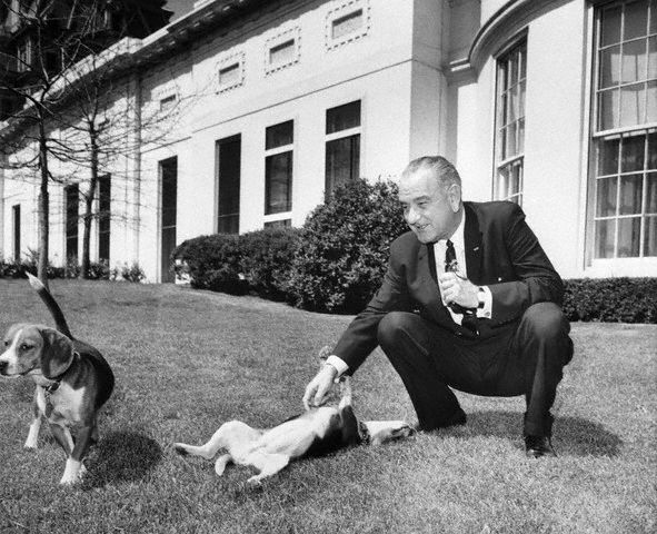 Lbj With His Two Beagles Named Him And Her Johnson Was A