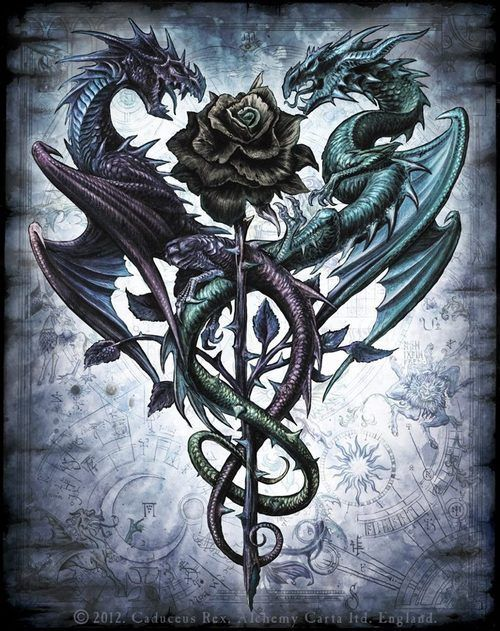 Awesome Two Gothic Dragon With Rose Tattoo Design Dragon Pictures Dragon Artwork Dragon Tattoo