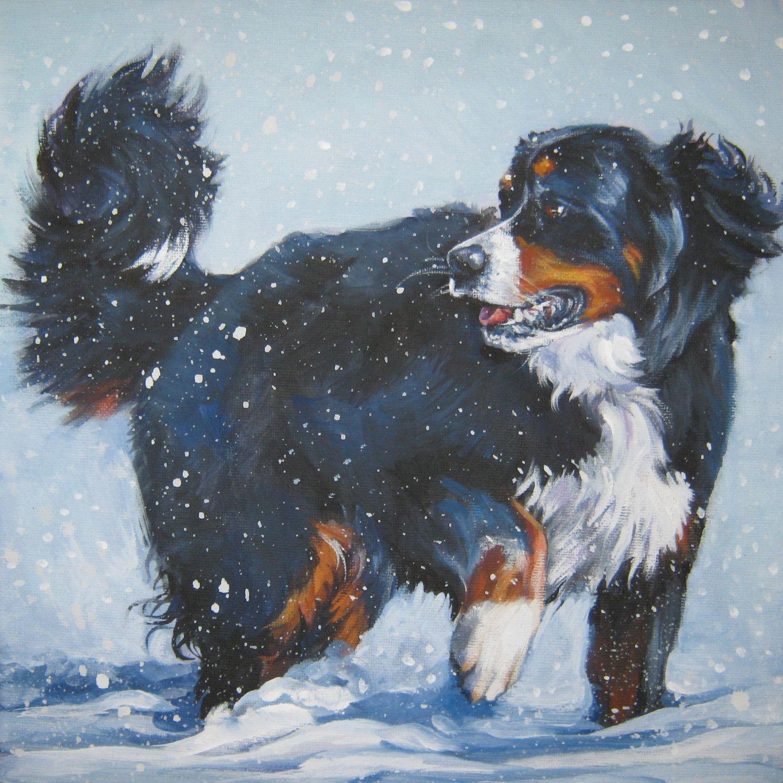 Bernese Mountain Dog art portrait PRINT of LAShepard painting 12x16