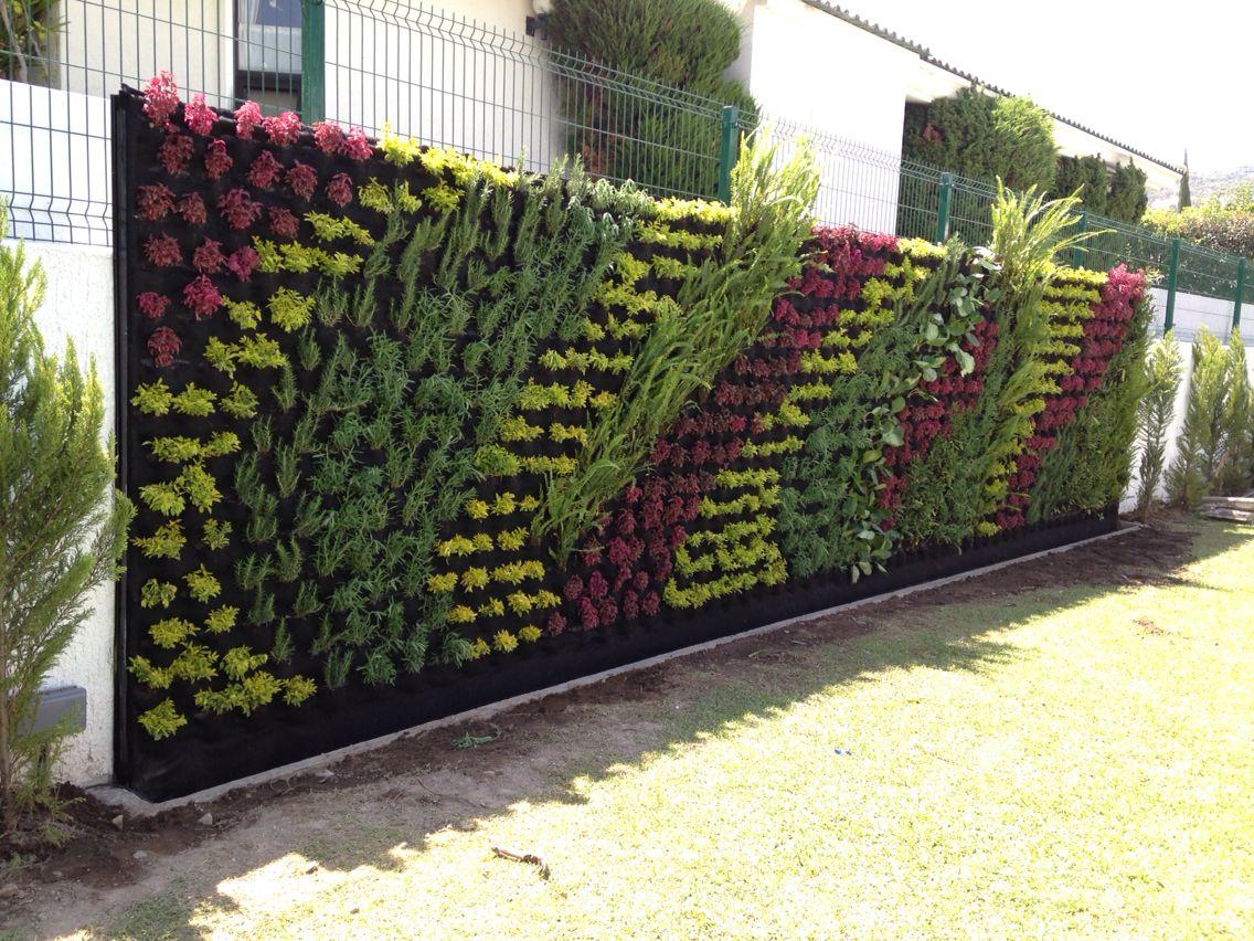 Jardin verrical muro verde jardines verticales y techos for Muros verdes verticales