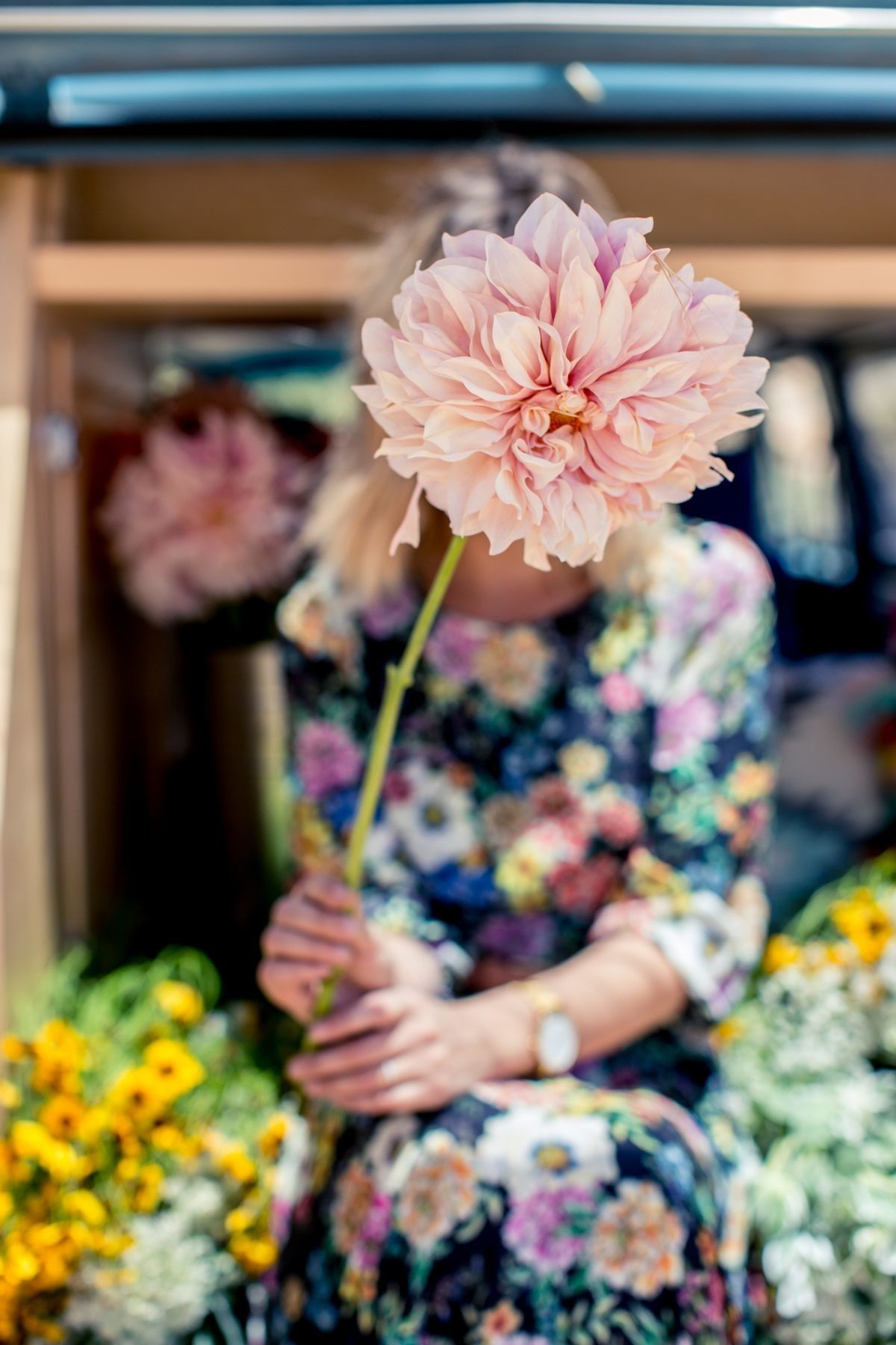Pin by 𝒮𝒾𝓂𝓅𝓁𝓎 𝒢𝓇𝒶𝒸𝑒 on quelquesfleurs Flower farm