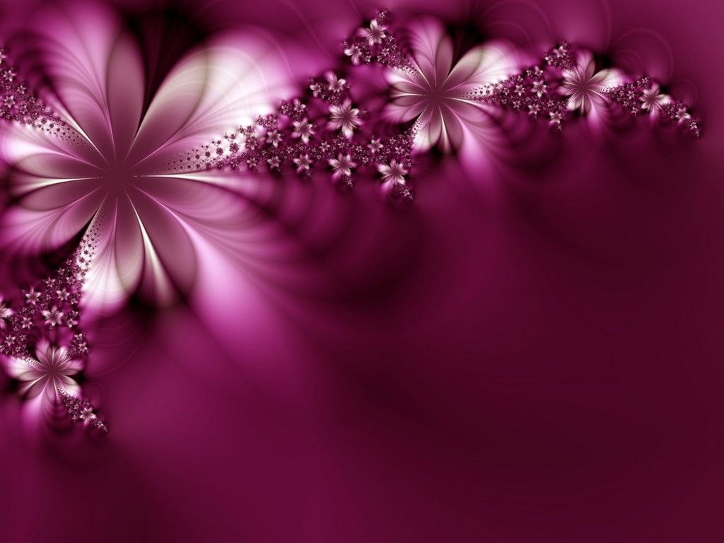 beautiful-flowers-wallpaper-free-download-2 | perfect purple
