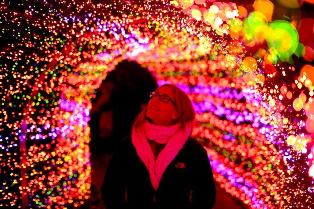 f204b0b103536698a3c33d4c90427458 - Botanical Gardens St Louis Light Show