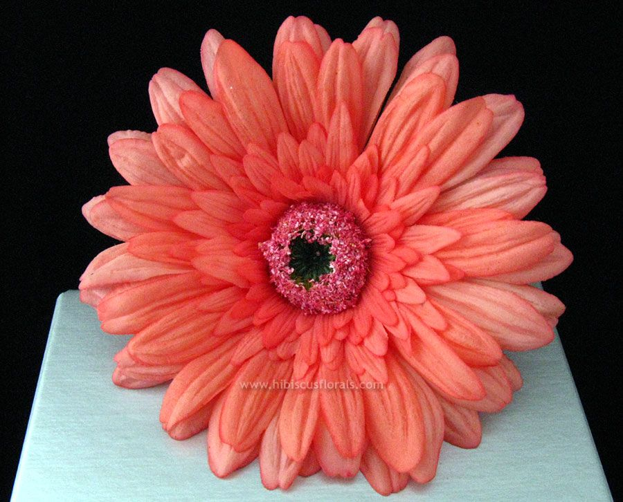 Coral Wedding Bouquets   coral gerbera daisy real touch hair flower ...