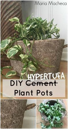 Maria Macheca shares how to make hypertufa plant pots- the easy way!