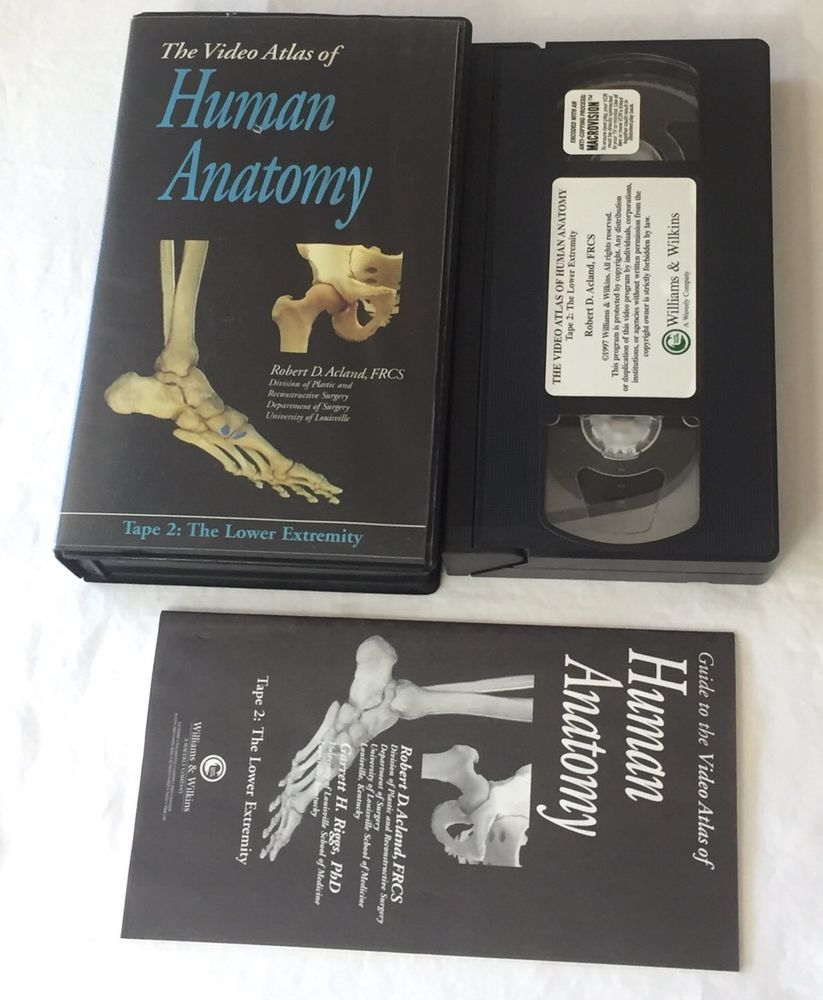 Anatomy Education VHS Video Atlas Tape 2 Lower Extremity Dissection ...