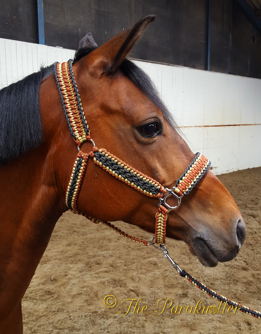 If i had a horse this is the kind of halter i would have for Paracord horse bridle