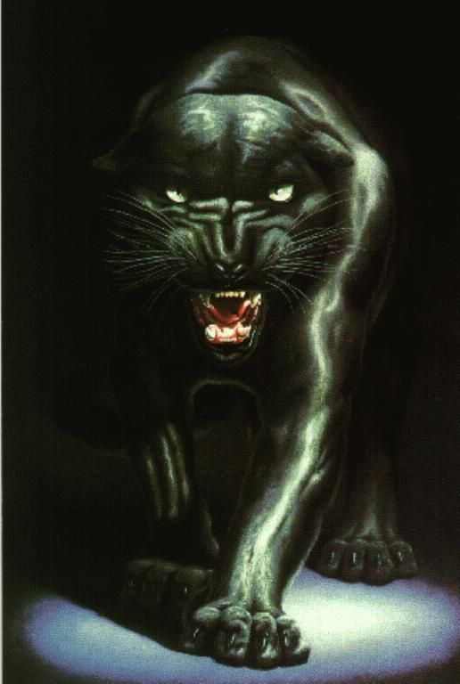 07a4bbc3c black panther tattoos | Fairy Black Panther Tattoos Tribal Tattoo Design  Angle I Am