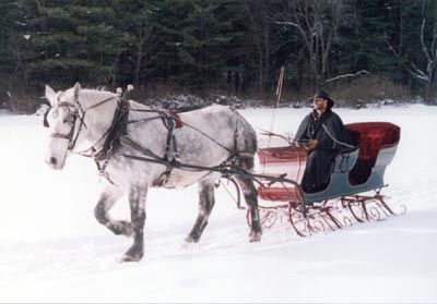 how to build a horse drawn sleigh