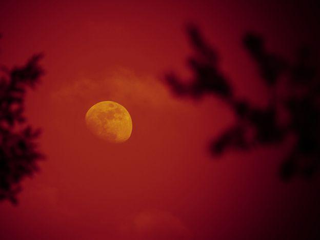 """Guía para ver la """"Luna roja"""" durante el eclipse de este martes en Mendoza."""