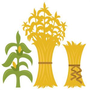Corn Stalks SVG cutting files for scrapbooking fall svg cut files ...