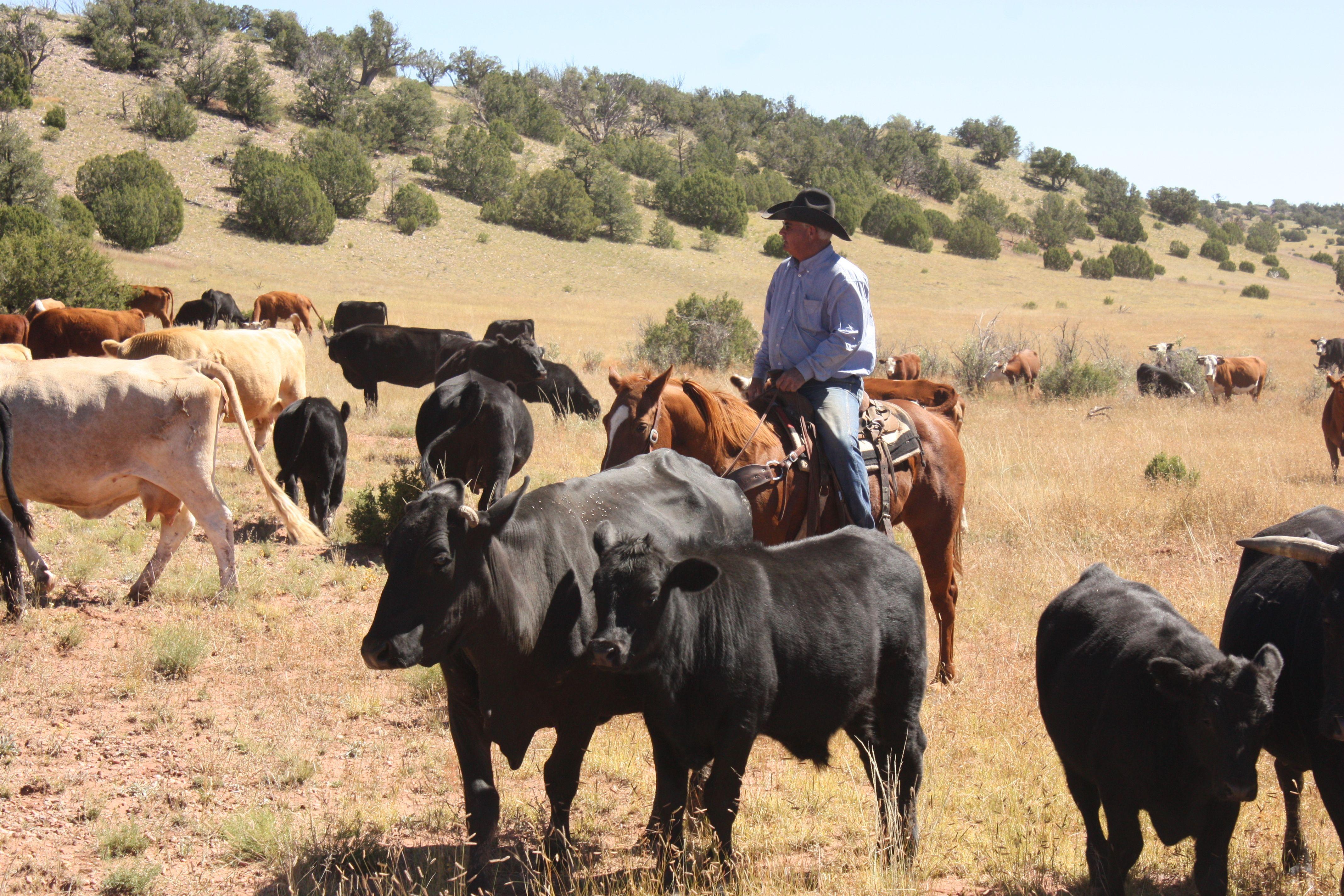 Pin On Ranch Life