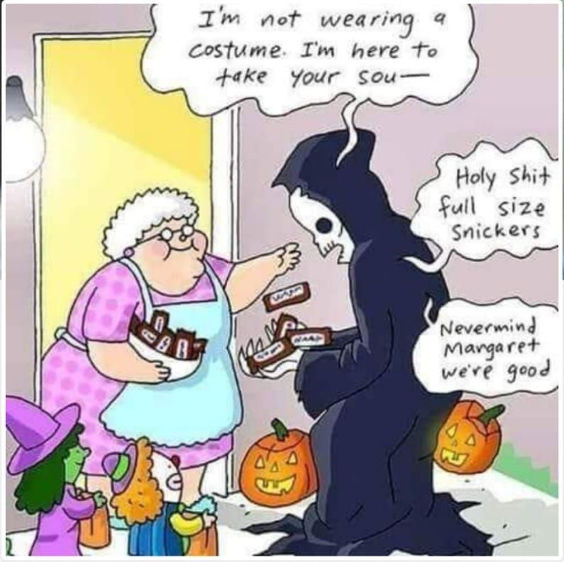 Bilder Die Immer Noch Lustig Schon Oder Skurril Sind Part 17 Seite 89 Bilder Die Immer Lustig Noch In 2020 Halloween Quotes Halloween Memes Funny Comics