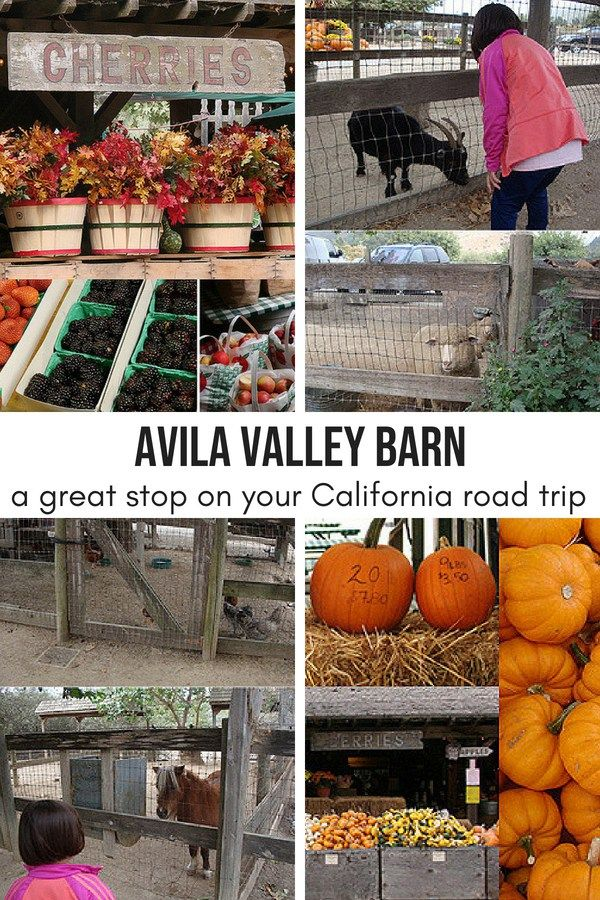Avila Valley Barn: a great stop on your California road ...