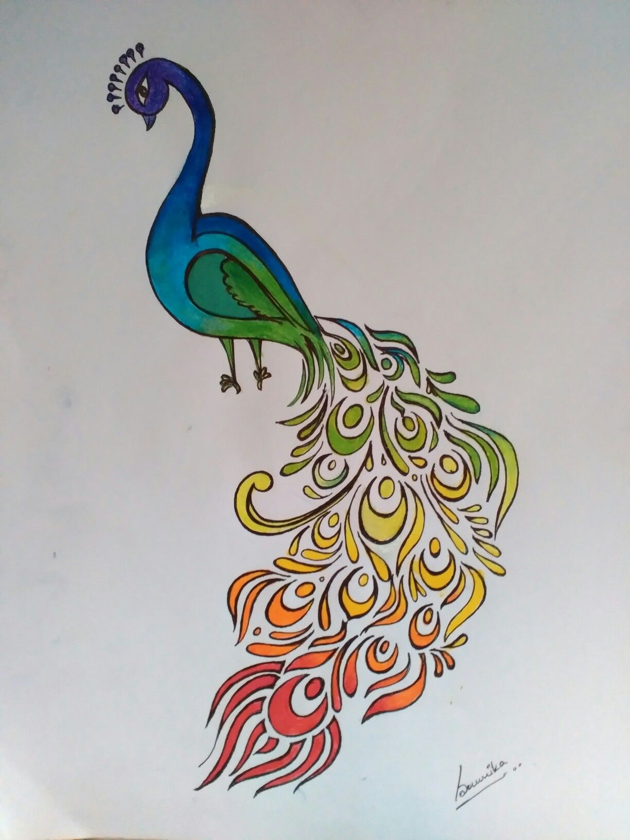 Peacock Abstract Colorful Rainbow Bird India Nature Easy Color