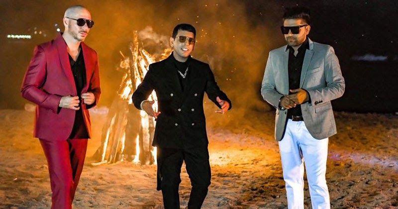 Pitbull Don T Stop The Party Super Clean Version Ft Tjr Music Videos Movie Stars Pitbulls
