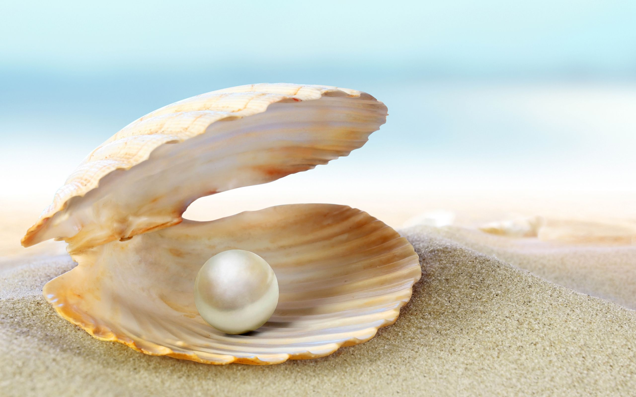 June Birthstone the magnificent pearl Find out more of the lore