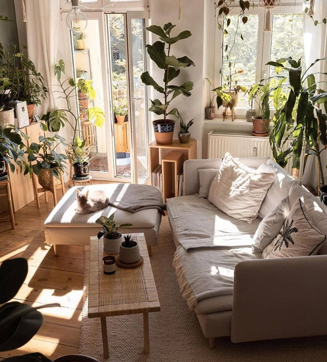 "𝐈𝐧𝐭𝐞𝐫𝐢𝐨𝐫𝐲𝐞𝐬𝐩𝐥𝐳 ® az Instagramon: ""✨ Zen Place ✨ . . Thanks for tagging me girl!😻 . . 📷: @caropeony . . #interioryesplz #apartmentherapy #apartmentjungle #cozyroom #cozyplace…"""