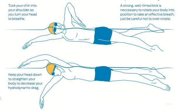 diagram of swimming diagram of a standard swimming pool wiring