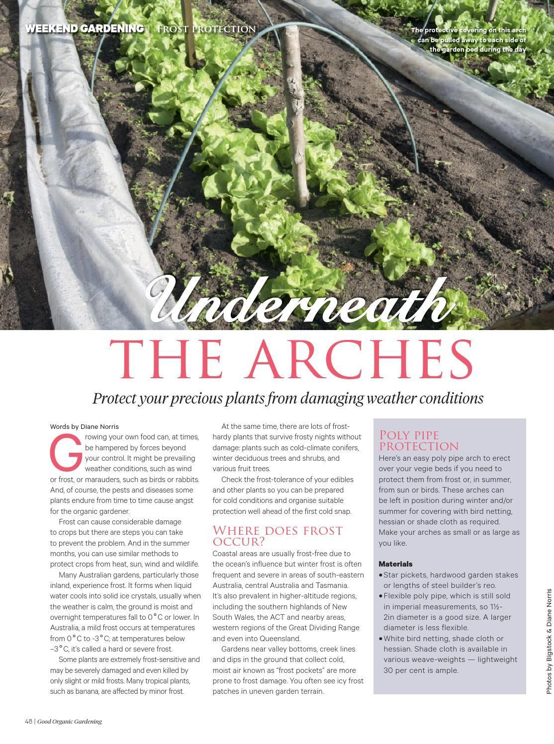 #ClippedOnIssuu from Good Organic Gardening #5.1 MAY / JUNE